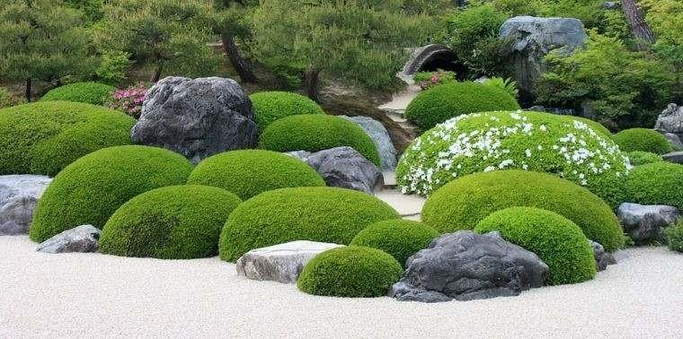 jardin-zen-mousse-cailloux